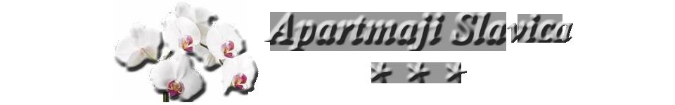 logotip4