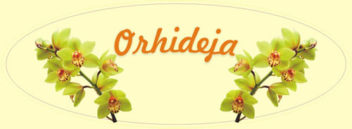 Orhideja Logo Svetli
